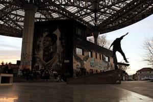 skater barrios